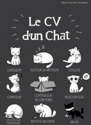cv_chat