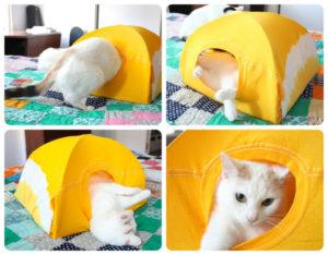 cat_tent