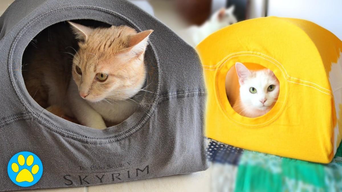 Tipi Pour Chat A Fabriquer fabriquer une tente ou un tipi pour votre chat - ecole du