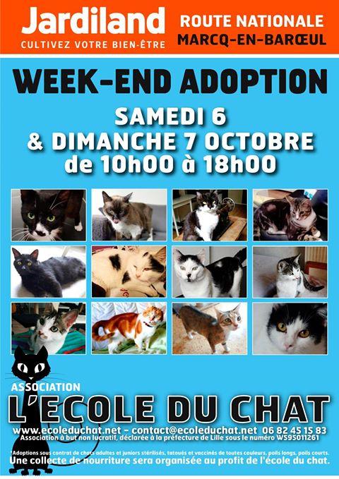 affiche-adoption-oct18
